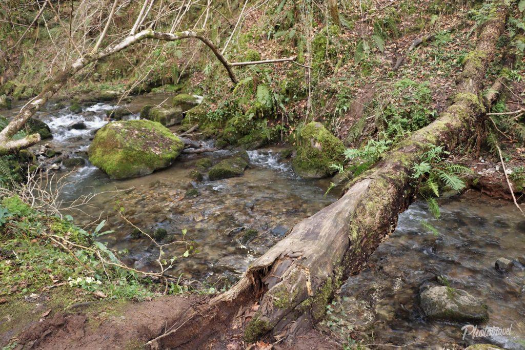 Puentes naturales que nos regala la naturaleza. Las Xanas - Senderismo