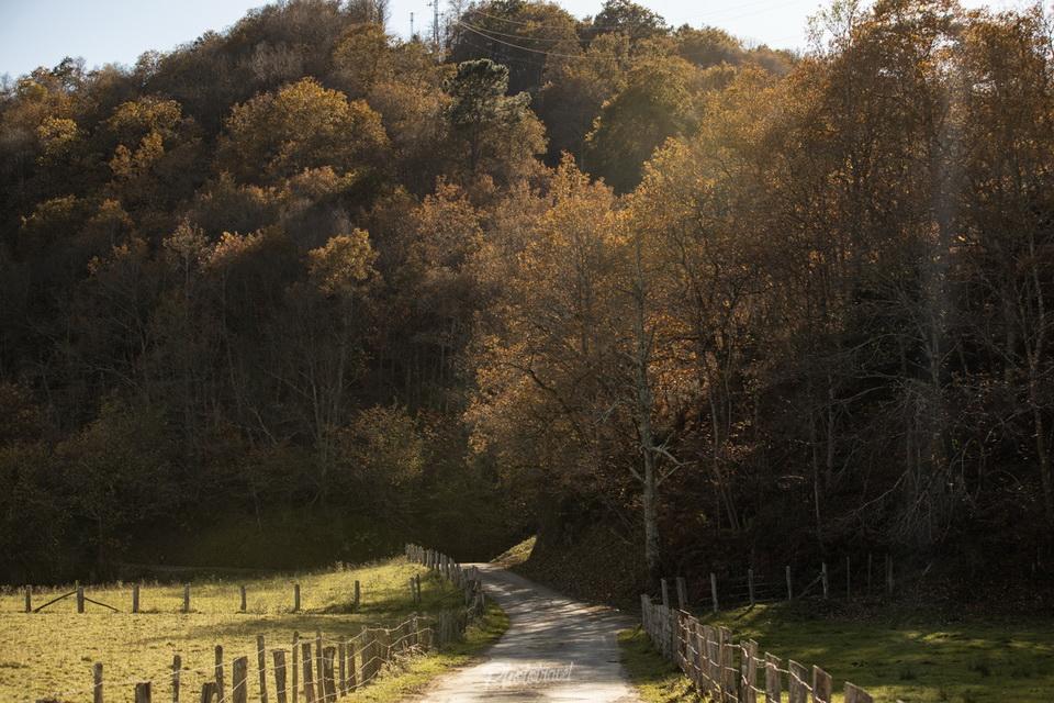 rutas de senderismo asturias