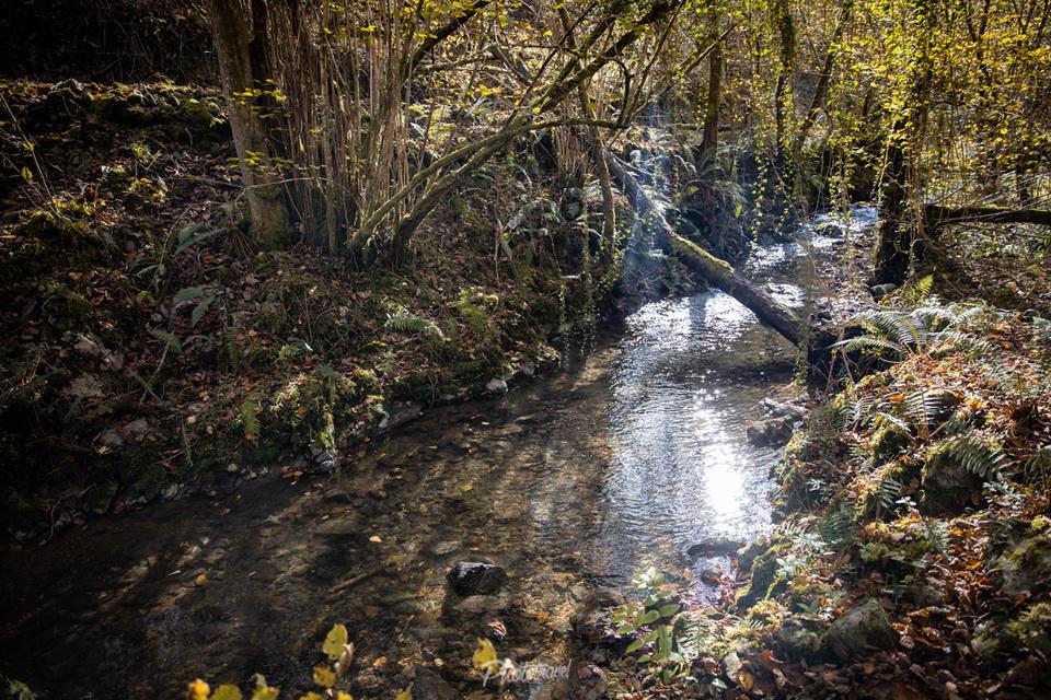 Ruta de la rivera de rio Peña